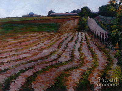 Furrowed Field Art Print