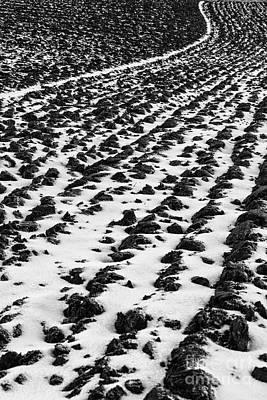 Furrows Art Print by John Farnan