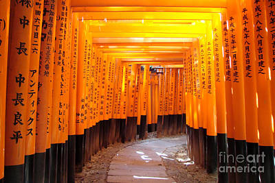 Tori Photograph - Fushimi Inari by Delphimages Photo Creations