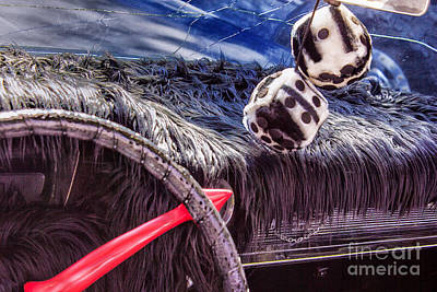 Digital Art - Fuzzies On Was Car by Georgianne Giese