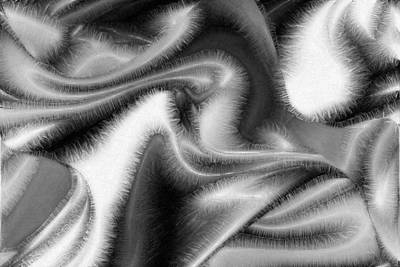 Digital Art - Fuzzy Things - Black And White by rd Erickson