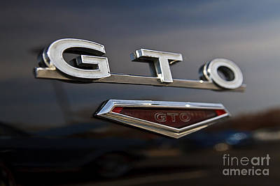 Photograph - G T O by Dennis Hedberg