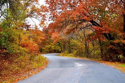Photograph - Gainesville 9437 by Ricardo J Ruiz de Porras