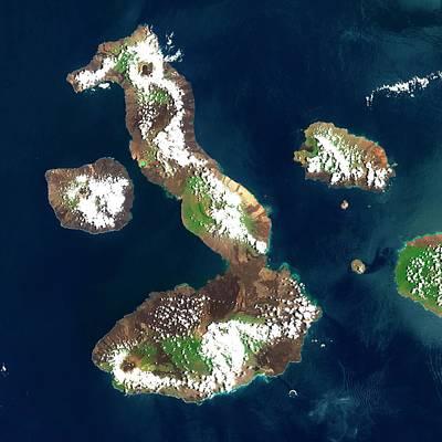 Santa Cruz Island Photograph - Galapagos Islands by Planetobserver/science Photo Library