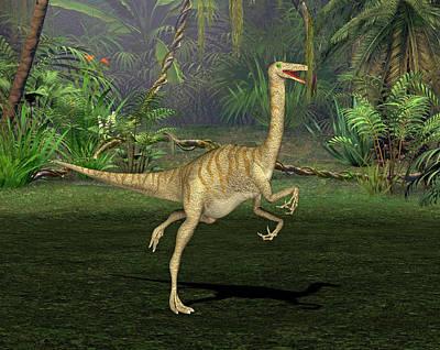 Gallimimus Dinosaur Art Print by Friedrich Saurer