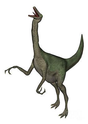 Ostrich Digital Art - Gallimimus Dinosaur Roaring by Elena Duvernay
