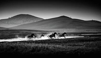 Photograph - Gallop by Blackstation
