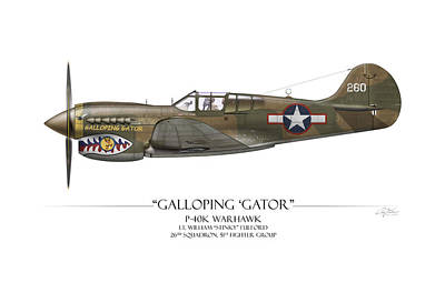 Group Digital Art - Galloping Gator P-40k Warhawk by Craig Tinder