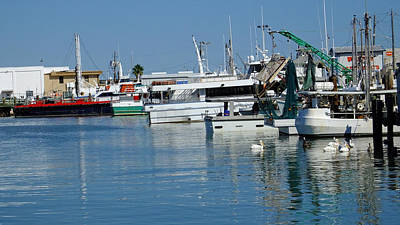 Photograph - Galveston Fishing Marina 1 by Judy Wanamaker