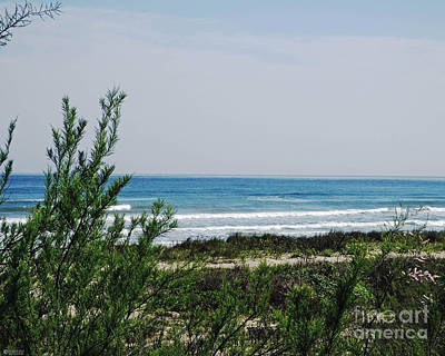 Photograph - Galveston Island Beach by Lizi Beard-Ward