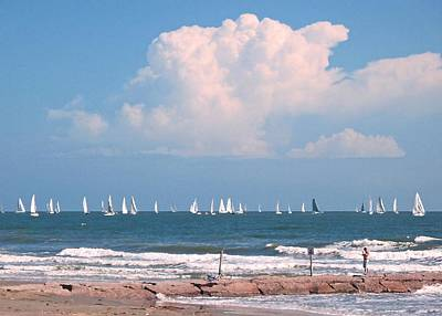 Photograph - Galveston Regatta by Connie Fox