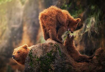 Brown Bear Wall Art - Photograph - Games On The Heights by Sergio Saavedra Ruiz