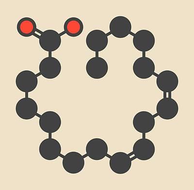 Gamma-linolenic Acid Molecule Art Print by Molekuul