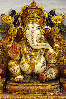 Ganesha  Art Print by Tim Gainey