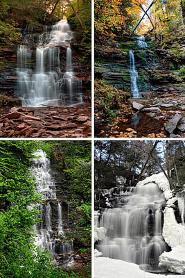 Photograph - Ganoga Falls In Every Season by Gene Walls