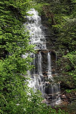Photograph - Ganoga Falls Through The New Spring Foliage by Gene Walls