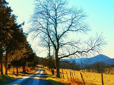 Photograph - Gap Road by Joyce Kimble Smith