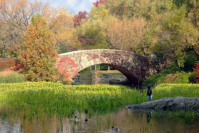 Photograph - Gapstow Bridge In The Fall by Michael Dorn