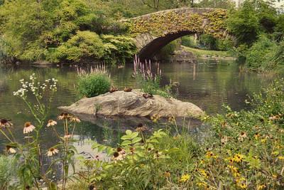Photograph - Gapstow Bridge by Paulette B Wright