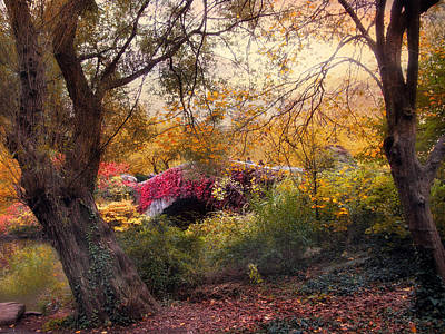 Photograph - Gapstow Secluded by Jessica Jenney