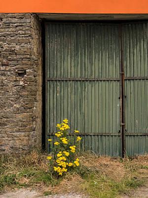 Garage Door In Ennistymon Art Print