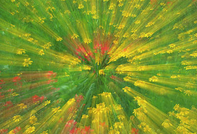 Abstract Movement Photograph - Garden Abstract Credit by Jaynes Gallery