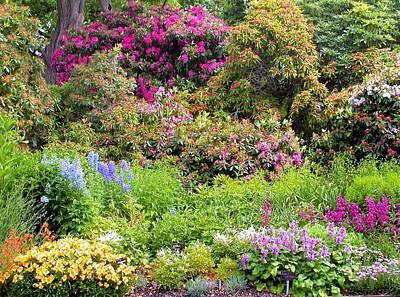 Photograph - Garden At Walter Peak by Jane Girardot