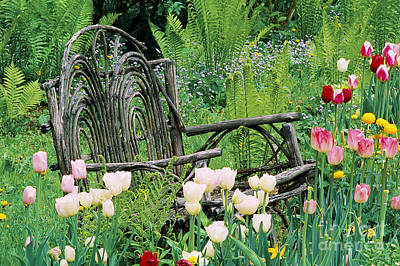 Photograph - Garden Bench by Alan L Graham