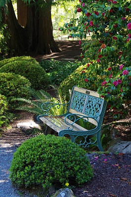 Photograph - Garden Bench At Hatley Park Gardens by Marilyn Wilson