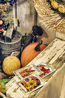 Photograph - Garden Bench by Heather Applegate