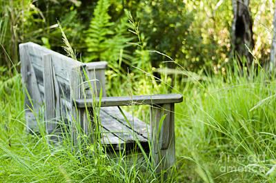 Garden Bench Art Print