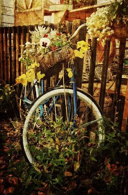 Photograph - Garden Bicycle by Ken Smith