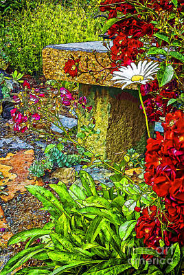 English Rock Groups Photograph - Garden Bouquet by Nancy Marie Ricketts