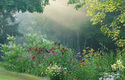 Photograph - Garden by Christopher Mace