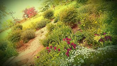 Photograph - Garden Wish by Dawn Vagts