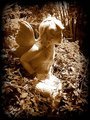 Photograph - Garden Fairy by Sheri McLeroy