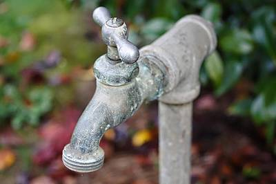 Garden Faucet Print by Cathie Tyler