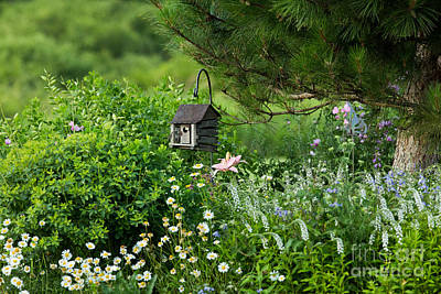 Photograph - Garden Flowers And Ornamental Bird House by Linda Freshwaters Arndt
