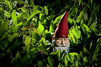 Photograph - Garden Gnome Among Lilies Of The Valley No.47 by Randall Nyhof