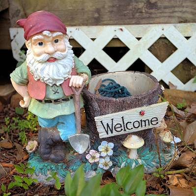 Photograph - Garden Gnome - Square by Gordon Elwell