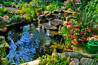 Photograph - Garden Goldfish Pond by Ginger Wakem