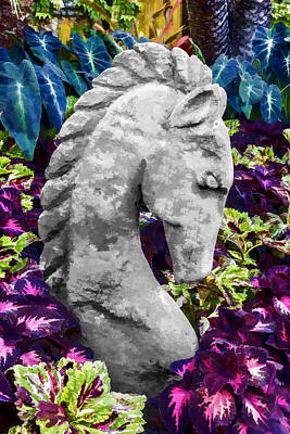 Digital Art - Garden Horse by Photographic Art by Russel Ray Photos