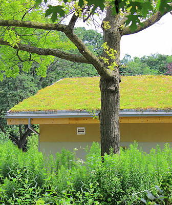 Photograph - Garden House by Kume Bryant
