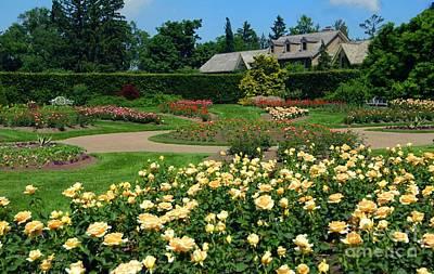 Garden Original by Kathleen Struckle