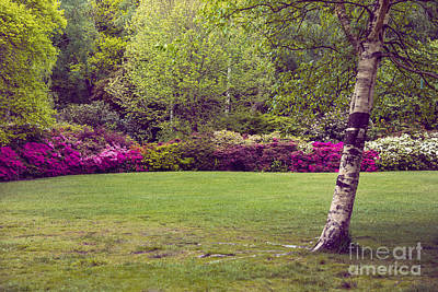 Garden Landscape Art Print by Svetlana Sewell