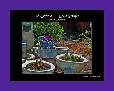 Photograph - Garden Love by Joseph Coulombe
