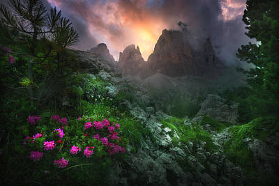 Fog Photograph - Garden Of Eden #2 by Luca Rebustini
