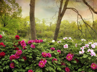 Photograph - Garden Of Peonies by Jessica Jenney