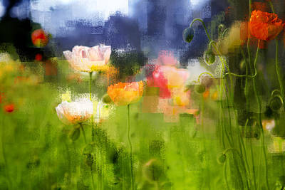 Art Print featuring the photograph Garden Of Poppies by Linde Townsend