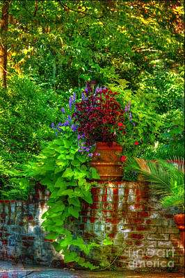 Photograph - Garden Of Serenity by Kathy Baccari